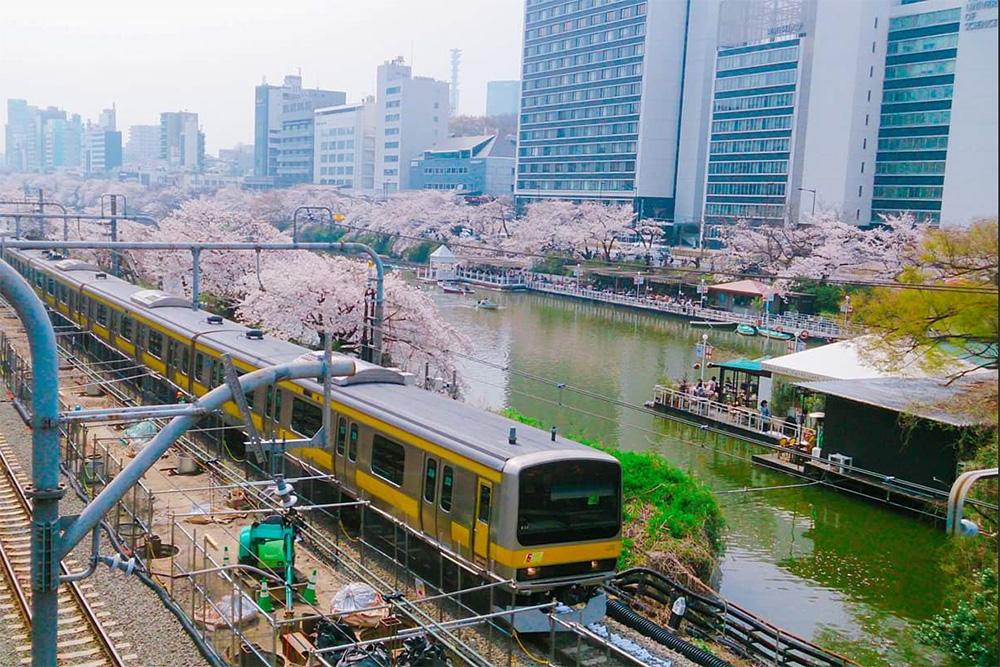 東京神楽坂に本部のある「東京理科大学」